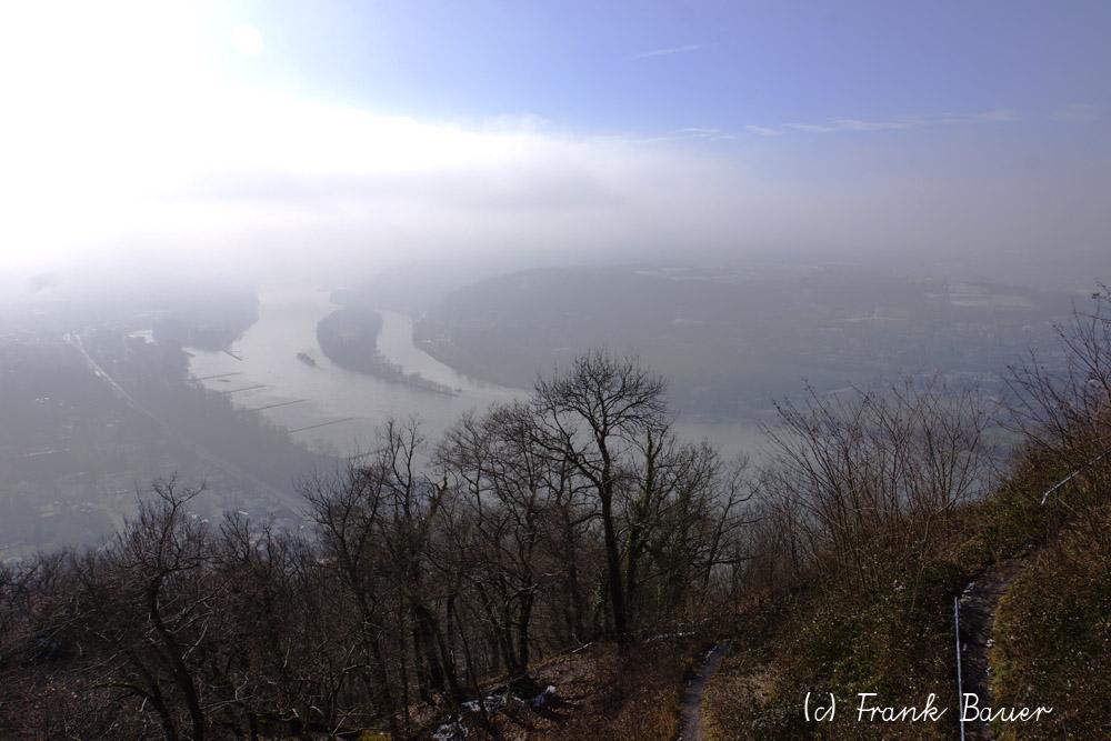 Blick vom Drachenfels Rheinaufwärts