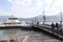 Fähre über den Rhein 1